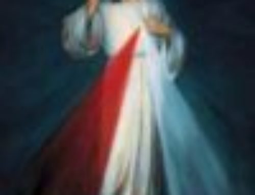 Divine Mercy Sunday – April 23rd