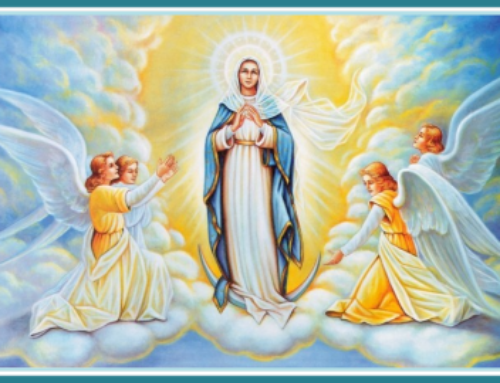 Feast of the Assumption Masses