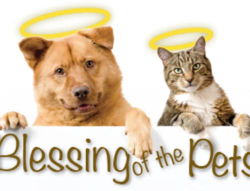 Pet Blessing – Saturday, October 7th at 10:30am